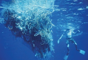 A miniscule bit of the Eastern Garbage Patch, which is actually twice the size of Texas