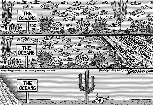 Overfishing, from Steve Greenberg