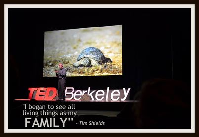 """Shields: """"I began to see all living things as my family."""""""